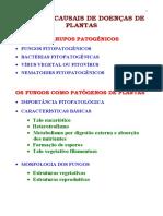 03- Os fungos como patógenos de plantas2005