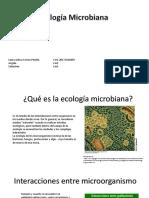Ecologia microbiana.pptx