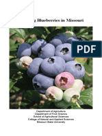 GrowingBlueberries.pdf