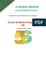 curso_programa_5s__76557