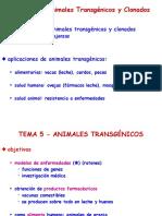 10.- Animales Transgénicos - 2015