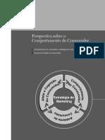 pertspectivas sobre o comportamento do consumidor.pdf