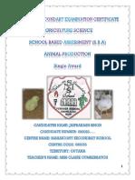 Jaiprakash Singh 5pv animal SBA.docx