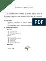 87622503-Elaboracion-de-Queso-Fresco.pdf