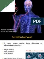 Aula2 - Sistema Nervoso