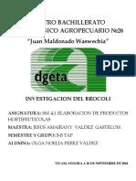 BROCOLI.docx