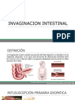 Invaginación Intestinal RyD 1