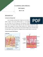 dokumen.tips_kista-ateroma-55c1e7078ebbb.doc