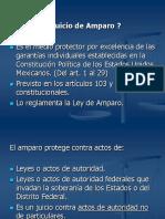 Diapositivas Amparo