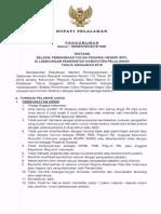 Pengumuman CPNS Pelalawan 2018 - Copy