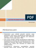 Kultur MTB.pptx