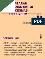 Tim Pokja Ukp