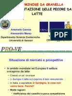Cuglieri_30_07_2008.pdf