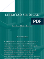 Libertad Sindical Sind