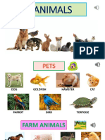 2._AnimalsVocabularyS
