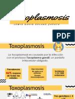 Toxoplasmosis en la gestación