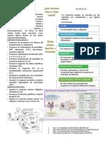 Células Cebadas, Basófilos y Eosinófilos