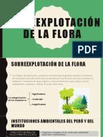 Sobre explotación de La Flora y fauna Diapos