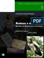 Ruinas e Urubus Volume-i(Hct5-2012)