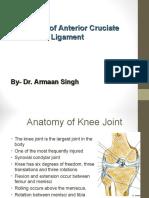 Anatomyofanteriorcruciateligamentby Dr 150302015712 Conversion Gate01