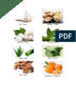 15 Plantas Medicinales - SOLO IMAGENES