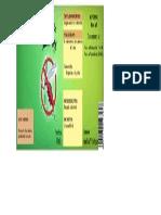 etiqueta de zancudo.pdf