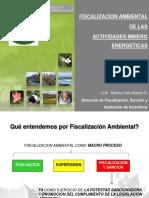 Fiscalizacion Ambiental de Las Actividades Minero Energeticas