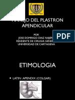Plastron apendicular1