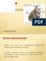 ANATOMI  KARDIOVASKULER