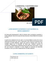 Economia Ambiental y Sostenibilidad 4