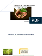 Economia Ambiental y Sostenibilidad 10