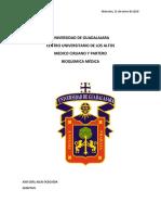 iones fundamentales.pdf