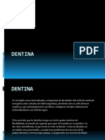 dentina1-111120115902-phpapp01.pptx