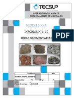 Informe n 10 Rocas Sedimentarias