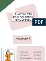 anatomidanfisiologisistempernapasan-140702113832-phpapp01-converted.docx
