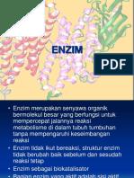 enzim-LAD