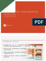 Proy de Inversion.pptx