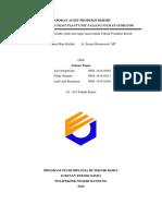 Revisi Audit Tpb Bab 1-4 Fix