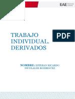 Trabajo de Individual. Instrumentos Derivados(1) (Reparado)