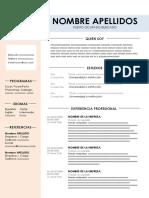 Curriculum Modelo 2