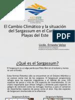 7. Ernesto Veloz. Cambio Climatico y Sargazo
