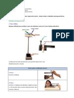 Medidas Antropometricas - MS
