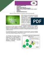 Blog Negocios Verdes