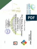 Certificados Sr. Raul Pineda