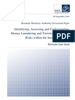 Identifying Assessing and Understanding ML-TF Risks in Insurance Sector
