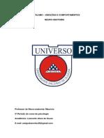 Hipotálamo - Prof Maurício - Segundo Periodo - Neuro Anatomia