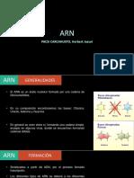 ARN-histo.pptx