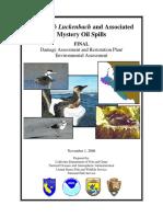 Final Oil Spills