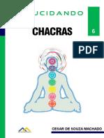 Elucidando Chacras.pdf