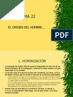 Tema 22, Diapositivas (Incompleto, Artehistoria)